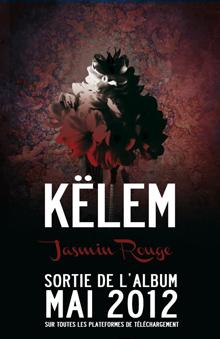 klem-300412