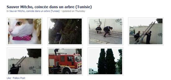 pompier-sauver-mitcho