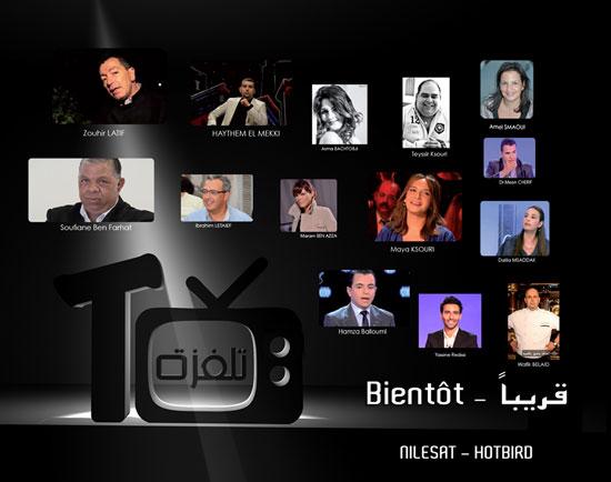 telvsa-tv-2013